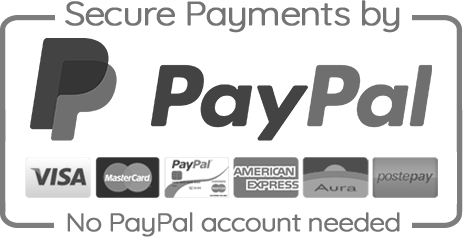 Secure Paypal Payment icon